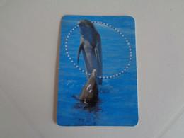 Golfinho Portugal Portuguese Pocket Calendar 2000 - Small : 1991-00