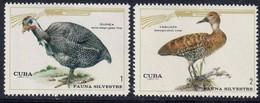 CUBA - Faune De La Forêt, Oiseaux, Faisan, Sanglier, Cerf - Y&T N° 1435-1441 - MNH - 1970 - Unused Stamps