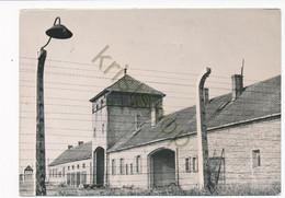 Oswiecim - Auschwitz - The Nazi Extermination Camp [AA49-5.915 - Polen