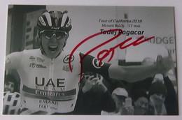 Tadej POGACAR - Signé De - Dédicace - Hand Signed - Autographe Authentique - Cycling