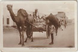 Maala Load Camels And Cart - Chameau  (E.3936) - Yemen