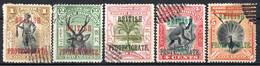 BORNEO DU NORD - (Protectorat Britannique) - 1901-12 - N° 112 à 125 - (Lot De 13 Valeurs Différentes) - Nordborneo (...-1963)