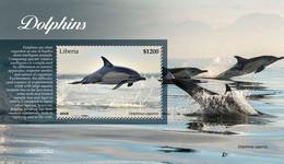 Liberia 2020  Fauna Dolphins   S202102 - Liberia