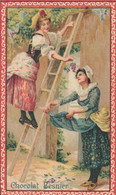 Petit Calendrier  1902. Chocolat Besnier. - Small : 1901-20
