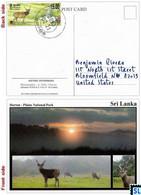 Sri Lanka Postcards, Stamps, Sambur Deer, Horton Plains National Park, UNESCO, Postcrossing - Sri Lanka (Ceylon)