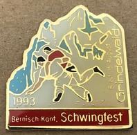 LUTTE SUISSE -  BERNISCH KANT. SCHWINGFEST - 8 / 15 AUGUST - AOÛT 1993 - GRINDELWALD - SCHWEIZ - SWITZERLAND -  (18) - Wrestling