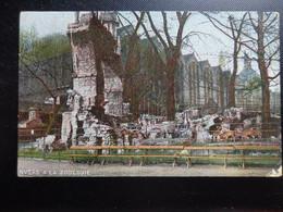 Zoo, Dierenpark, Tierpark / Zoo Van Antwerpen -> Beschreven 1909 - Other