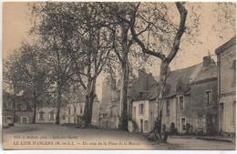 49 LE LION-D'ANGERS  Un Coin De La Place De La Mairie - Altri Comuni
