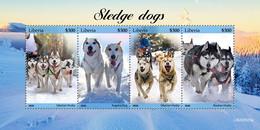 Liberia 2020 Fauna  Sledge Dogs  S202102 - Liberia