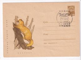 USSR Russia 1967 Kolinsky - Storia Postale