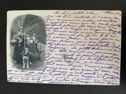 Laitière Flamande Et Attelage - Collections