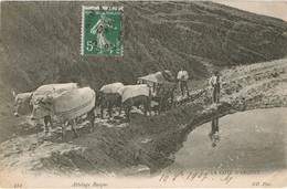 CARTE POSTALE ATTELAGE BASQUE COTE D'ARGENT - Aquitaine