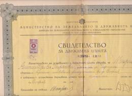 261744 / Bulgaria 1944 - 100 Leva (1941) Revenue Fiscaux , Chirpan Diploma - Faculty Of Agronomy -  Sofia - Diploma & School Reports