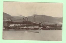 K065 - Carte Photo Balley & Flower - Bateau, Batellerie, Le Britannia Et Hindostan (training Ship) - Unclassified