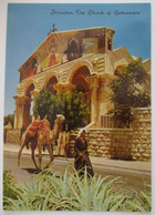 ISRAEL JERUSALEM OLD CITY CHURCH GETHSEMANE POSTCARD PICTURE PHOTO POST CARD ANSICHTSKARTE CARTOLINA CARTE POSTALE - Israele