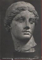 Museo Barracco. Testa Di Afrodite.Non Viaggiata - Zonder Classificatie