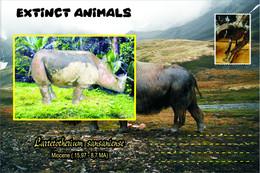 Vignettes De Fantaisie, Extinct Animals : Rhinocerotidae, Lartetotherium Sansaniense - Fantasy Labels