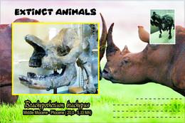 Vignettes De Fantaisie, Extinct Animals : Rhinocerotidae, Brachypotherium Brachypus - Fantasy Labels