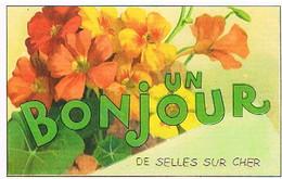 41 UN    BONJOUR    DE  SELLES  SUR  CHER   CPM  TBE  VR687 - Selles Sur Cher