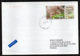 CAP VERT CABO VERDE Enveloppe Cover Timbre FAO - Isola Di Capo Verde