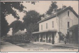 Coligny , Train En Gare , Animée - Andere Gemeenten