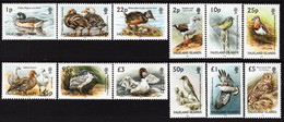 Falkland Islands - 2003 - Birds - Mint Definitive Stamp Set - Islas Malvinas