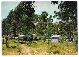 CPM Portugal LISBOA LISBONNE Camping Monsanto Zona Florestal Forestière Tente Caravane 1964 - Lisboa