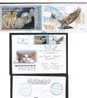 2021 .Letter Abkhazia - Russia.Space.Monkeys.Cat.Eagle.(9) - Eagles & Birds Of Prey