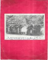 PLOMBIERES LES BAINS  - 88 -  CPA DOS SIMPLE  De 1901 - A La Feuillée DOROTHEE - OGE1 - - Plombieres Les Bains