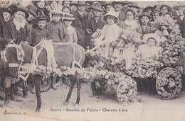 V2-13) SALON DE PROVENCE - BATAILLE DE FLEURS CHARETTE A ANE - ( TRES ANIMEE - HABITANTS - 2 SCANS ) - Salon De Provence