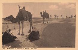 MOKANESIS EN TOURNEE AU DESERT - LA PAUSE - Other