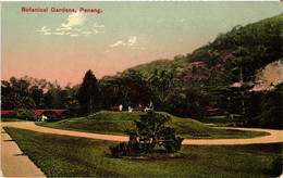 Malaysia, Penang, Botanical Gardens, Vintage Postcard - Malaysia