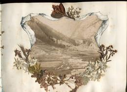 ALBUM 36 Photographies  1880  SAVOIE CHAMONIX Et GENEVE Agrémentée Végetaux Et Fleurs Des Régions - Old (before 1900)
