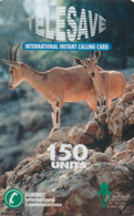 ISRAEL. FAUNA.  Euronet - Goats - Cabras. 150u. IL-TLS-ANI-0005. (001). - Israel