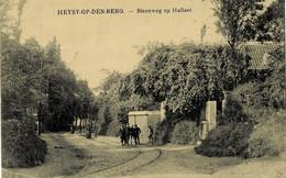 Heyst-op-den-Berg Steenweg Op Hahhaer Circulée En 1919 - Heist-op-den-Berg