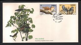 BUZIN / RWANDA 1985 / FDC FLEETWOOD / 200ème ANNIVERSAIRE DE LA NAISSANCE DE JJ AUDUBON / COB 1245 & 1246 - 1985-.. Vogels (Buzin)