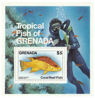 GRENADE - Faune, WWF, Coral Reef Fish - Y&T BF 117 + N° 1147-1150 - MNH - 1984 - Grenada (1974-...)