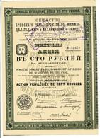 Société Des ACIÉRIES, FORGES Et ATELIERS De MACHINES De BRIANSK; Action Privilégiee - Russia