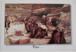 KINGDOM JORDAN VILLAGE DESERT PETRA RED SEA MOUNTAIN POSTCARD CARTOLINA KARTE CPM PICTURE ANSICHTSKARTE CARD PHOTO - Jordan