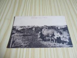 CPA En Auvergne - Vacherie à La Montagne. - Auvergne
