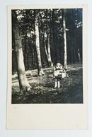 1940s Girl Little Red Riding Hood Basket Pies Pigtail Skirt Forest Children - Groepen Kinderen En Familie