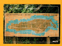 Ile Ste Marguerite         Edt  Mar    N° - Maps
