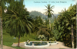 JAMAÏQUE. Carte Postale Neuve. Castleton Gardens, 9 Miles From Kingston. - Jamaica