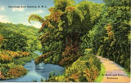 JAMAÏQUE. Carte Postale Neuve. By Road And River. Trelawny. - Jamaica