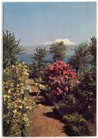 Chile , Las Cascades , Volcan Calbuco Osorno - Chile