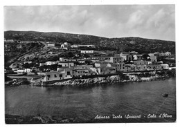 Asinara (Sassari). Cala D'Oliva. - Sassari