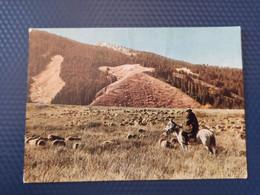 KAZAKHSTAN. Issyk Lake .  Soviet  Postcard - Old Pc 1966 - Rare! - Kazakhstan