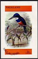 Nagaland Martin Pêcheur Kingfisher (A51-238a) - Autres