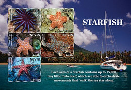 Nevis 2020   Fauna  Star Fish  I202104 - St.Kitts And Nevis ( 1983-...)