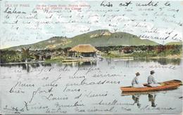 1909 écrite De La Habana - ISLE OF PINES ............. - Cuba